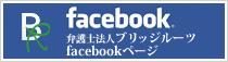 BridgeRoots Facebook Page